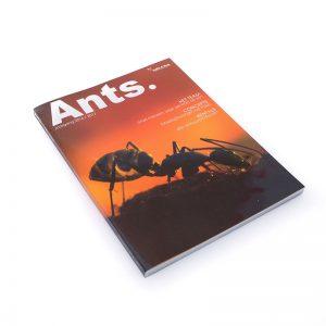 drukwerkfabriek-jaarboek