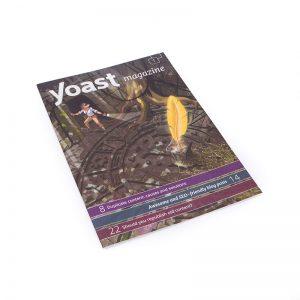 drukwerkfabriek-magazine-yoast